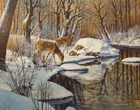 Quinnipiac River White Tails Fine-Art Print