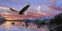 Silent Wings Of Freedom Fine-Art Print