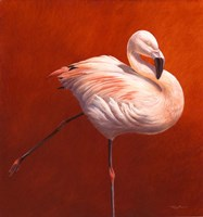 Flame Bird Flamingo Fine-Art Print