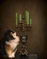 Cat And The Candelabra Fine-Art Print