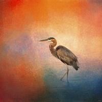 Sunset Heron Fine-Art Print