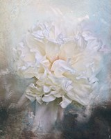 Abstract Peony In Blue Fine-Art Print