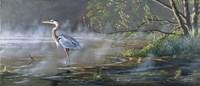Quiet Cove - Great Blue Heron Fine-Art Print