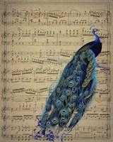 Peacock 1 Fine-Art Print
