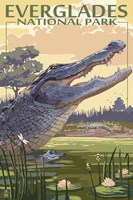 Everglades 2 Fine-Art Print