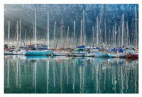 Hout Bay Harbor, Hout Bay South Africa Fine-Art Print