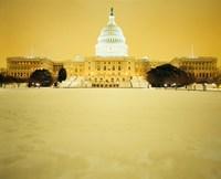 US Capitol Building during Snow Storm, Washington DC Fine-Art Print