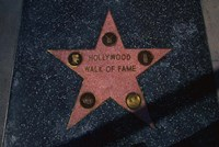 Hollywood Walk of Fame Star, Los Angeles, CA Fine-Art Print