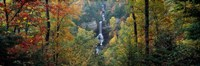 Raven Cliff Falls, Sumter National Forest, Greenville County, South Carolina Fine-Art Print