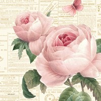 Roses in Paris VI Fine-Art Print