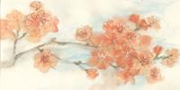 Peach Blossom I Fine-Art Print