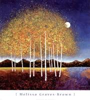 Evening Stream Fine-Art Print