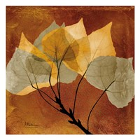 Golden Aspen Fine-Art Print