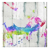 Pig Colorful Fine-Art Print