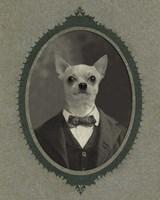 Dog Series #1 Fine-Art Print