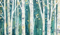 Birches in Spring Fine-Art Print