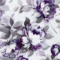 Scent of Roses Plum II Fine-Art Print