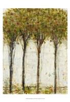 Apple Orchard I Fine-Art Print