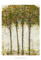 Apple Orchard II Fine-Art Print