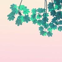 Color Pops 1 Fine-Art Print