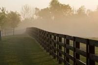 Morning Mist & Fence, Kentucky 08 Fine-Art Print