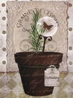 Rosemary Wall Decal