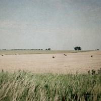 Neutral Country II Fine-Art Print