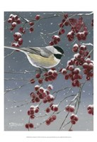 Winter Chickadees I Fine-Art Print
