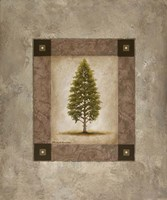 European Pine I Fine-Art Print