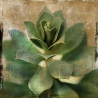 Succulent I Fine-Art Print