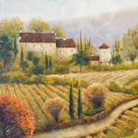 Tuscany Vineyard I Fine-Art Print