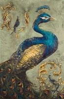 Peacock on Sage I Fine-Art Print