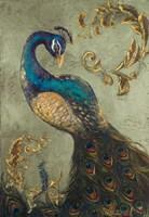 Peacock on Sage II Fine-Art Print