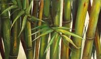 Bamboo on Beige II Fine-Art Print