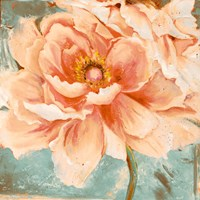 Beautiful Peonies Square I Fine-Art Print