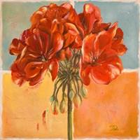 Red Geraniums I Fine-Art Print