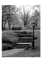 Central Park Stairs To Nowhere Fine-Art Print