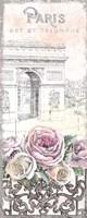 Paris Roses Panel VII Fine-Art Print