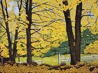 Golden Day, New Hampshire Fine-Art Print