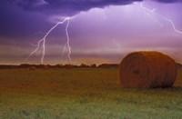 Lightning Over Hay Fields Fine-Art Print