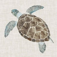 Sea Turtle II Fine-Art Print