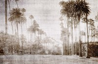Driving in Beverly Hills - Sepia Fine-Art Print