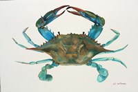 Blue Crab Fine-Art Print