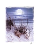 Moonlight Fine-Art Print