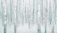 Birches in Winter Blue Gray Fine-Art Print