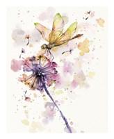 Dragonfly & Dandelion Fine-Art Print