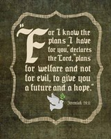 Jeremiah 29:11 For I know the Plans I have for You (White Dove) Fine-Art Print