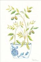 Extend an Olive Branch Fine-Art Print