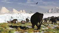 Woolly Mammoths and Woolly Rhinos in a Prehistoric Landscape Fine-Art Print