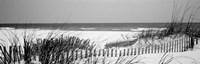 Fence on the beach, Bon Secour National Wildlife Refuge, Bon Secour, Alabama Fine-Art Print